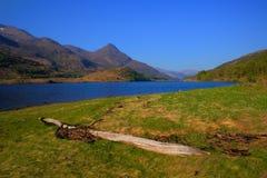 Punto di vista britannico di Leven Lochaber Scotland del lago alle montagne con legname galleggiante Immagini Stock Libere da Diritti