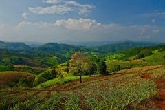 Punto di vista di Chang Rai Thailand sopra il paesaggio immagine stock