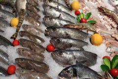 Punto di vista dei pesci freschi sul contatore Fotografia Stock