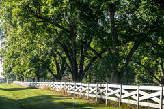 Punto di vista del paese, con il recinto bianco Fotografie Stock