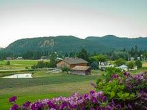 Punto di vista del paese della montagna con i fiori Fotografie Stock Libere da Diritti