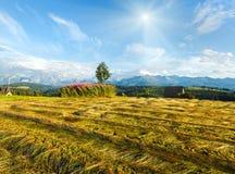 Punto di vista del paese di sera della montagna di estate con il campo falciato Fotografie Stock Libere da Diritti