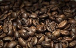 Punto di vista del primo piano dei chicchi di caffè marroni Fotografie Stock