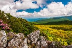 Punto di vista del Ridge blu dalle scogliere nel parco nazionale di Shenandoah Immagini Stock Libere da Diritti