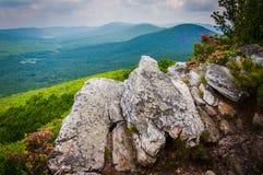 Punto di vista del Ridge e degli appalachi della valle dalla manopola di Tibbet, nel G Immagine Stock Libera da Diritti