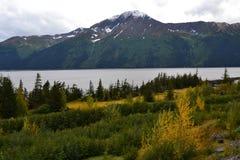 Punto di vista dell'Alaska Seward Immagine Stock Libera da Diritti