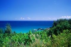 punto di vista dell'oceano immagine stock