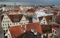 Punto di vista dell'uccello di vecchia città a Tallinn, Estonia Fotografia Stock
