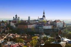 Punto di vista dell'uccello su vecchia Tallinn Immagini Stock Libere da Diritti