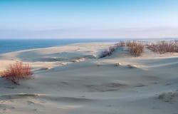Punto di vista delle dune di sabbia allo sputo di Curonian Immagini Stock