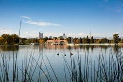 Punto di vista di Denver Colorado del parco della città Fotografie Stock Libere da Diritti