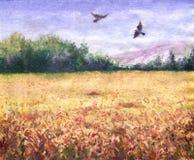 Punto di vista di estate del giacimento di grano e degli uccelli di volo Fotografia Stock Libera da Diritti