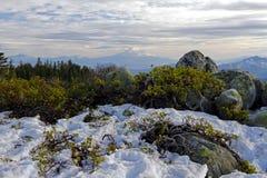 Punto di vista di Shasta Fotografie Stock