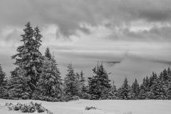 Punto di vista di Snowy Immagini Stock Libere da Diritti