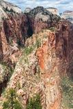 Punto di vista di Zion National Park dalla cima di atterraggio di Angel's, Utah, U.S.A. Immagini Stock Libere da Diritti