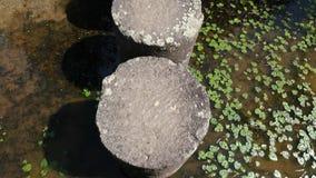 Punto di vista discendente della prima persona di camminata sulle colonne di pietra attraverso lo stagno del giardino, 4K stock footage