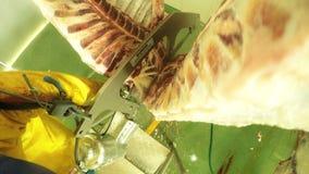 Punto di vista di Fpv di scena del mattatoio di un macellaio Using Water Hose sulla carcassa animale archivi video