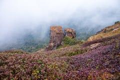 Punto di vista a Kew Mae Pan Nature Trail, parco nazionale di Doi Inthanon, Immagini Stock