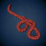 Punto di vista microscopico del virus di Ebola Fotografie Stock Libere da Diritti