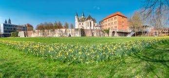 Punto di vista panoramico della chiesa di Kloster, della parete antica della fortezza e dei tulipani dei fiori alla primavera in  fotografia stock libera da diritti