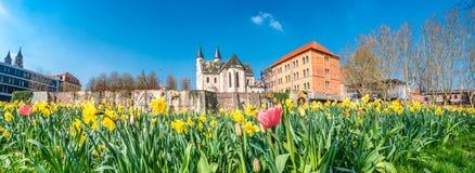 Punto di vista panoramico della chiesa di Kloster, della parete antica della fortezza e dei tulipani dei fiori alla primavera in  fotografie stock