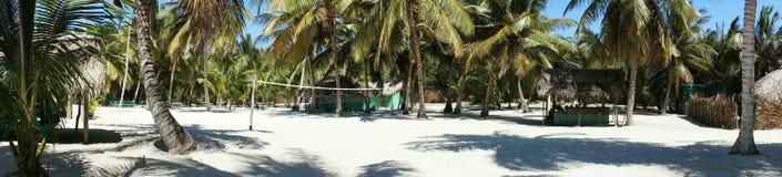 Punto di vista paradisiaco della spiaggia di Isla Saona Fotografie Stock