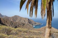 Punto di vista piacevole alla costa del nord di La Gomera vicino a Hermigua con la palma fotografie stock