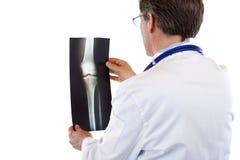 Punto di vista posteriore del medico che studia la radiografia del giunto di ginocchio Fotografia Stock