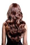Punto di vista posteriore della donna castana con capelli ricci neri lunghi Fotografie Stock