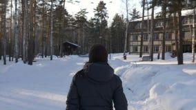 Punto di vista posteriore della donna che cammina nel parco nevoso di inverno stock footage