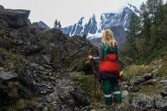 Punto di vista posteriore della donna che sta in montagne, immagine stock libera da diritti
