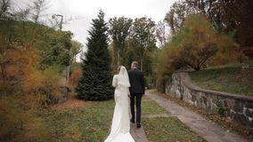 Punto di vista posteriore delle persone appena sposate che camminano nel parco stock footage