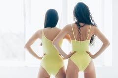 Punto di vista posteriore di giovani donne sexy con le natiche perfette in sportswea fotografia stock libera da diritti