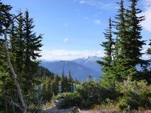 Punto di vista scenico della montagna di Whistler Fotografia Stock