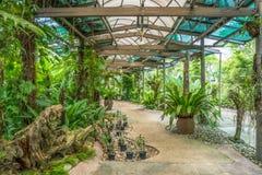 Punto di vista scenico di Kuala Lumpur Orchid Garden immagine stock
