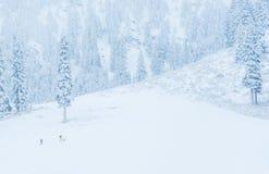 Punto di vista scenico di piccola gente che cammina in montagna della neve, Washington, Fotografia Stock Libera da Diritti
