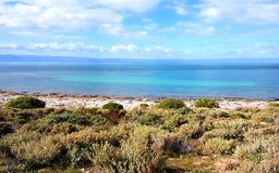 Punto di vista di Spencer Gulf a punto basso Immagine Stock