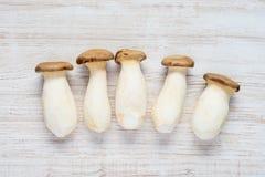 Punto di vista superiore dei funghi commestibili di Eryngii Immagini Stock Libere da Diritti