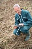 Punto di vista superiore dell'agricoltore che si inginocchia nel campo e che per mezzo della compressa fotografia stock