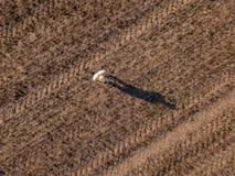 Punto di vista superiore dell'agricoltore maschio che pilota un fuco nel campo fotografia stock