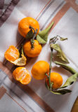 Punto di vista superiore delle arance. Immagine Stock Libera da Diritti