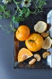 Punto di vista superiore delle arance sul piatto Fotografia Stock Libera da Diritti