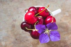 Punto di vista superiore delle ciliege con un fiore porpora e una paglia in una tazza bianca su fondo di legno immagini stock libere da diritti