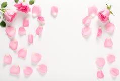 Punto di vista superiore delle foglie e delle rose Fotografia Stock Libera da Diritti