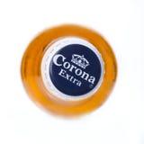 Punto di vista superiore di Corona Extra Beer fotografia stock libera da diritti