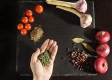 Punto di vista superiore di un bordo scuro con le verdure con le spezie per la cottura, mano con le erbe secche nella palma, copy Immagini Stock Libere da Diritti