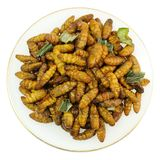 Punto di vista superiore di Fried Coconut Worms profondo su fondo bianco immagine stock