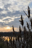 Punto en la puesta del sol Fotos de archivo