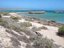 Punto escarpado, punto Westernmost, bahía del tiburón, Australia occidental foto de archivo libre de regalías