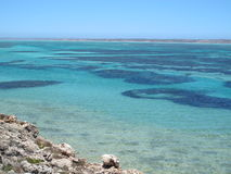 Punto ripido, punto Westernmost, baia dello squalo, Australia occidentale fotografie stock
